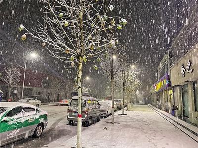 11月20日,延安市甘泉县迎来降雪。本报记者 代泽均 摄